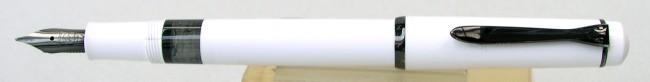 A Pelikan M100 in living monotone.