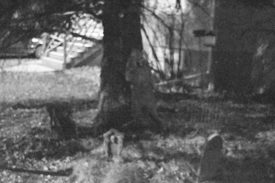 Graveyard 2014 nightvision