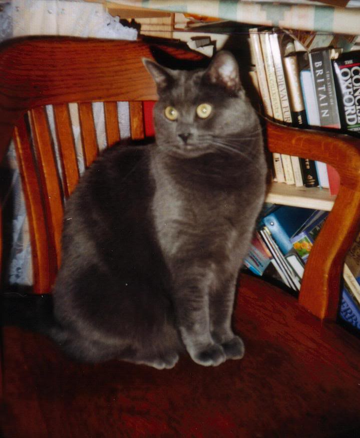 Ryoga Maru 1999-2010